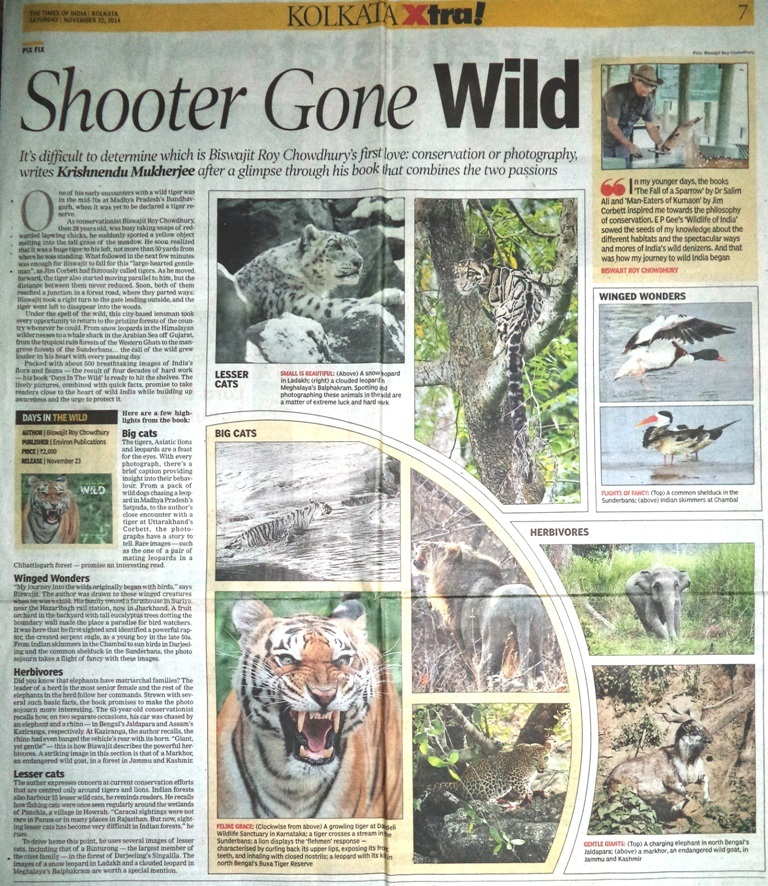 21112014Shooter gone wild_Times of India
