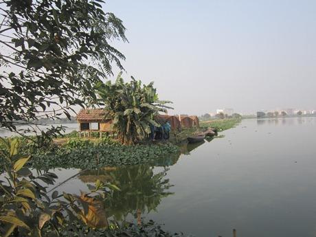 East Kolkata Wetland