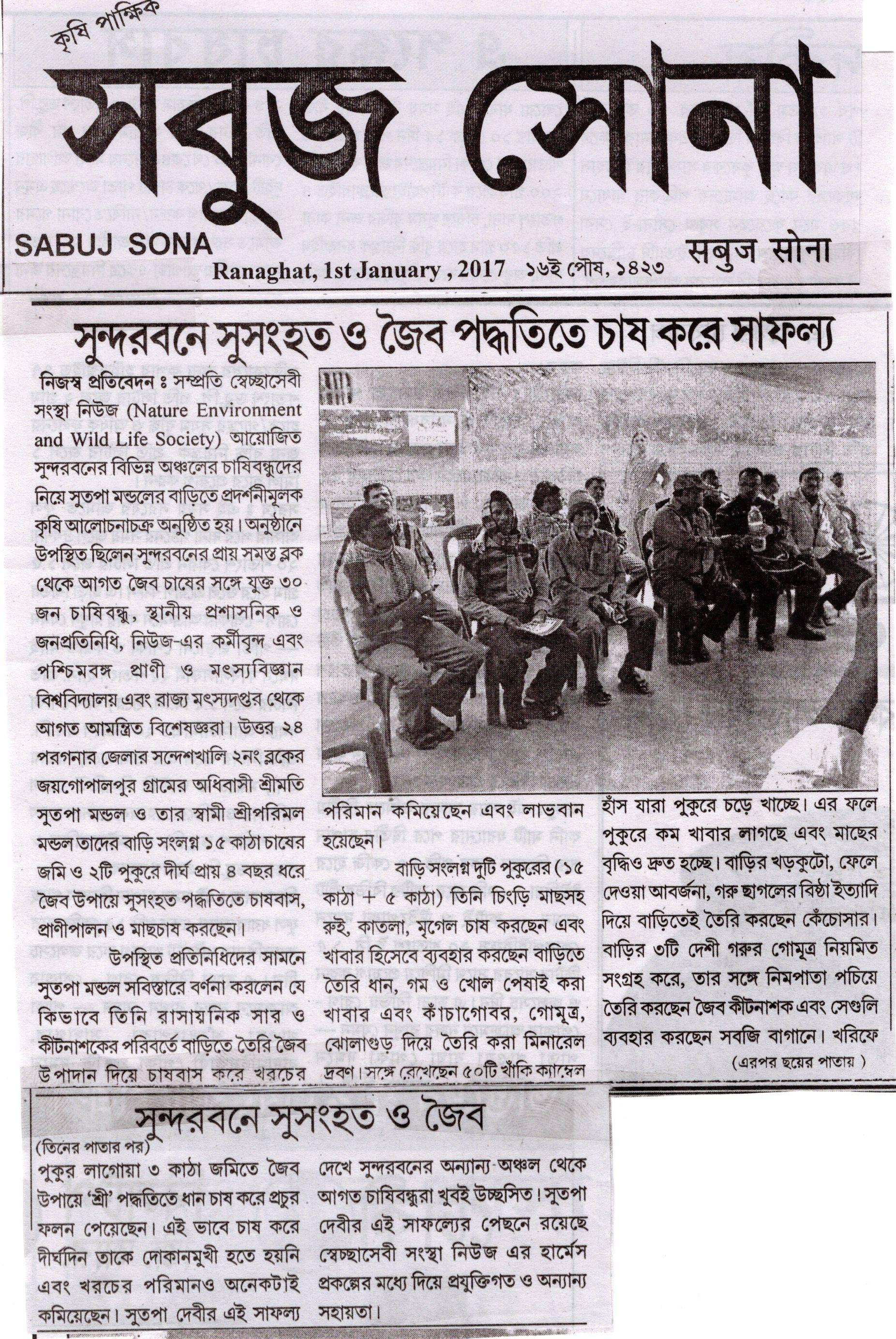 Sabuj Sona 1st Jan 17002